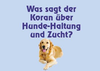Was sagt der Koran über Hunde-Haltung und Zucht?