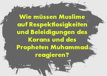 Wie müssen Muslime auf Respektlosigkeiten und Beleidigungen des Korans und des Propheten Muhammad reagieren?